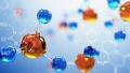 Sanginita Chemicals profitability decreases by 14.6%