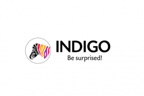 Indigo Paints to open its IPO on January 20, 2021