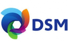 DSM Q1 2021 sales adjusted EBITDA up by 13% at €441 mn