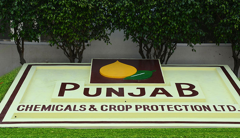 V K Gupta appointed CEO of Punjab Chemicals